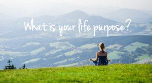 mục đích của cuộc đời