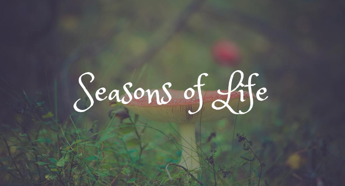 Những mùa của cuộc sống